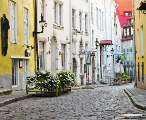 Tallinn Altstadt Rundgang