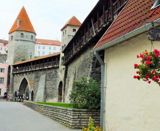 Ausflug für Rollstuhlfahrer in Tallinn
